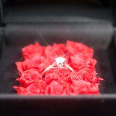 最高にロマンチックなプロポーズを叶える「ダーズンローズプロポーズケース」プレゼント